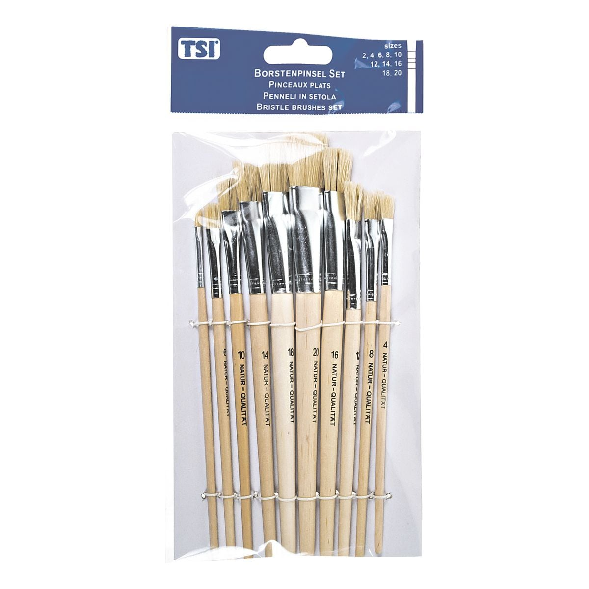 TSI Set van10 penselen