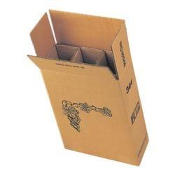 Kartonnen flesverpakking